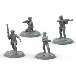 FALLOUT WASTELAND WARFARE: SURVIVORS MINUTEMEN (INGLES)