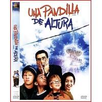 UNA PANDILLA DE ALTURA DVD 2002 Dirigida por John Schultz